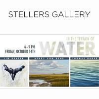 "Stellers Gallery Presents ""In The Terrain of Water"""