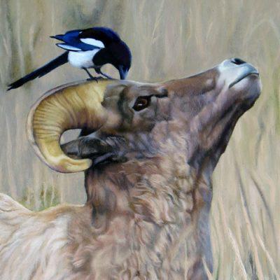 8th Annual Nature & Wildlife Exhibit
