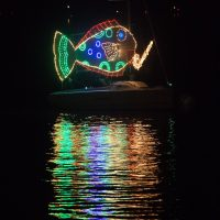 Holiday Regatta of Lights