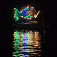 Holiday Regatta of Lights