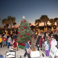 Surf Illumination - Holiday Tree Lighting