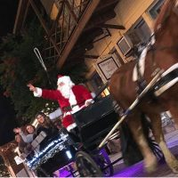 Nights of Lights Wine and Carriage Rides