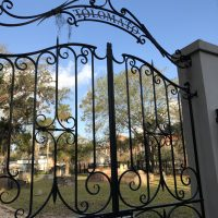 Before the Cemetery: Mission Tolomato and Its Peop...