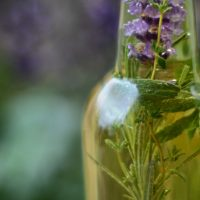 """Surviving The Plague: A Hands-On """"Make & Take Class"""" Learning to Create 4 Thieves Vinegar/Oil"""