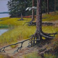 First Coast Pastel Society Members Show 2019