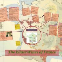 White Wines of France