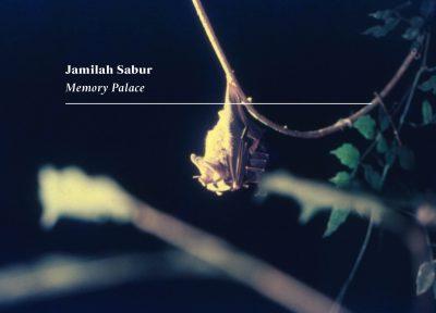 Exhibition: Jamilah Sabur, Memory Palace