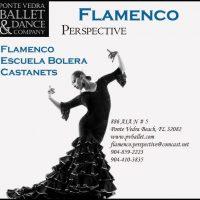 Flamenco Perspective