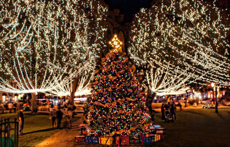 nights of light christmas tree