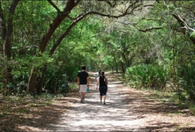 Guided Exploration Hike: GTM Research Reserve