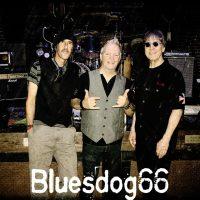 MUSIC BY THE SEA | Bluesdog 66