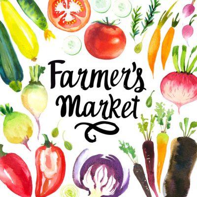 Nocatee Farmers Market | NOVEMBER 20