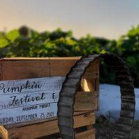 Pumpkin Festival + Handmade Market
