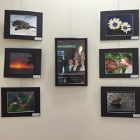 4-H Photo Exhibit