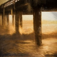 SACC Fourth Annual Juried Member Photography Show